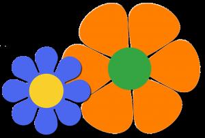 bloem oranje en blauw