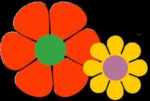 bloem rood en geel